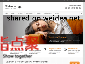 wordpress中文企业主题 Modernize3.17