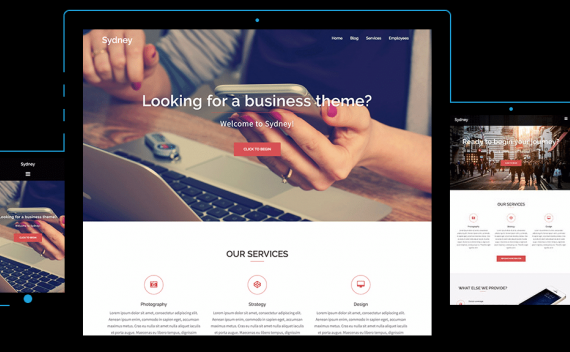 WordPress企业主题 Sydney 免费wordpress企业主题自适应多用途商业企业主题