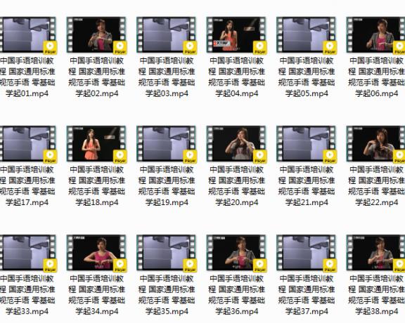 零基础教程_中国手语培训教程 国家通用标准规范手语_自学视频教程
